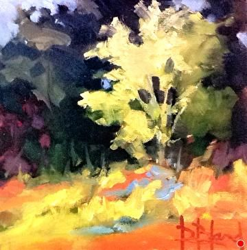 Light and Shadow by Donna Bland Oil ~ 8 x 8