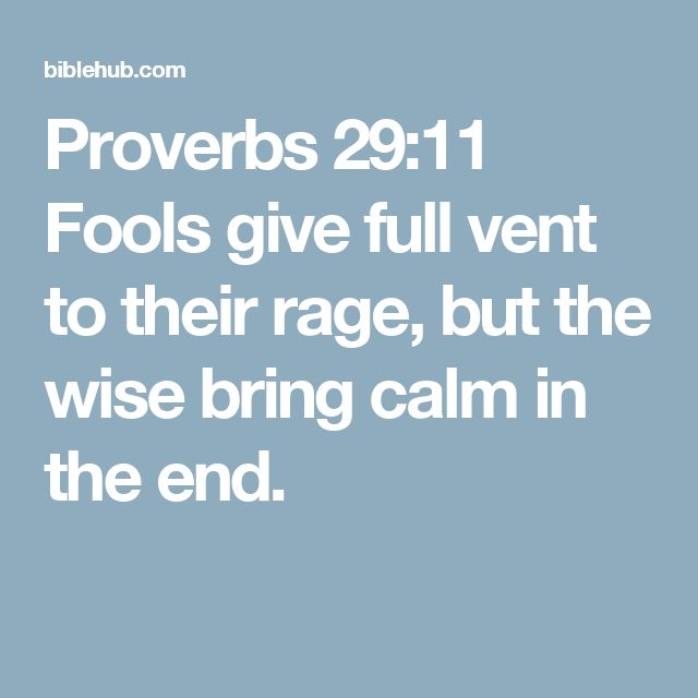 Proverbs 29:11 Fools give full vent to their rage, but the wise bring calm in the end.