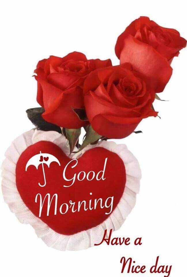908 best greetings good wishes images on pinterest beach find this pin and more on greetings good wishes by eman majali m4hsunfo