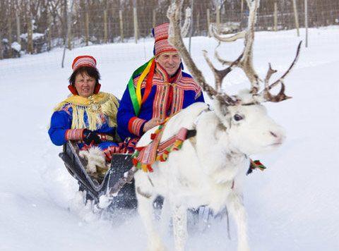 Reindeer sledging and sami adventure at Sorrisniva, Alta - Norway