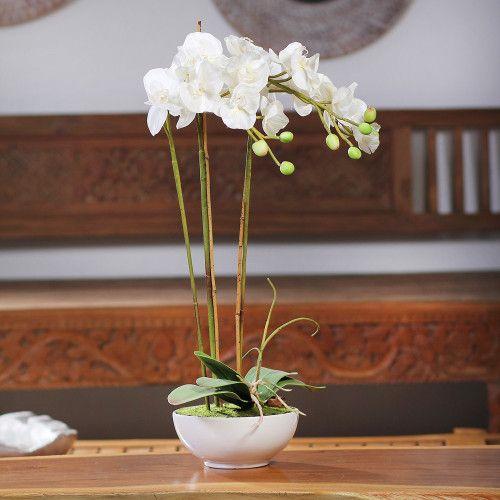 Arranjo De Orquídeas 3 Galhos 15 Flores Folhagens E Vaso 72Cm Vaso Redondo Com Orquídea-Branco-Único