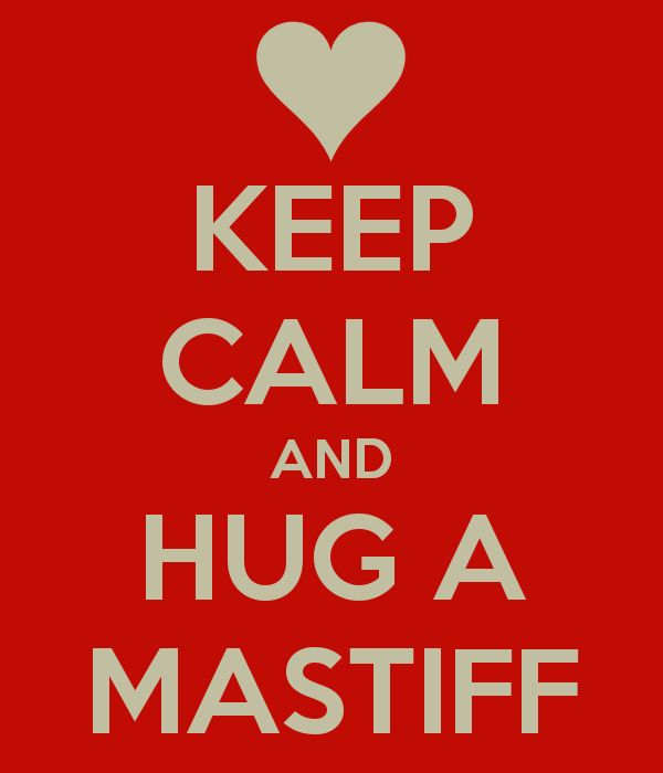 KEEP CALM AND HUG A #MASTIFF