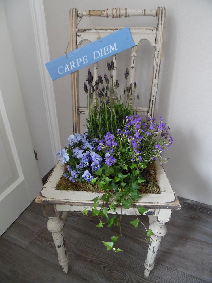 Van een oude brocante stoel een plantenbak gemaakt! Met o.a mijn favoriete planten, viooltjes en lavendel in mijn favoriete kleur. Met andere woorden carpe diem..