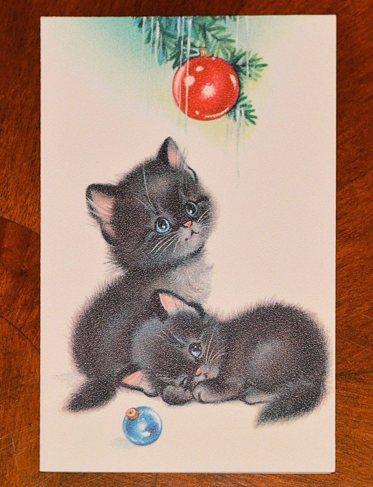 Vintage Unused Christmas Card Blue Eyed Cat Cats Kittens Norcross Mid Century