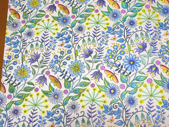 25 best ideas about secret garden colouring on pinterest colour - A Coloring Book