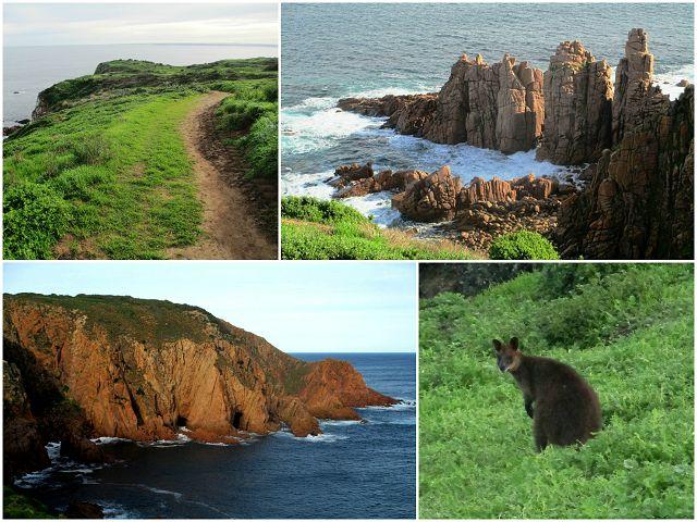 Cape Woolamai: A Must See on Phillip Island