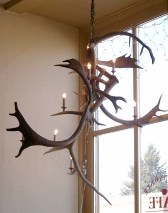 different take on the antler chandelier