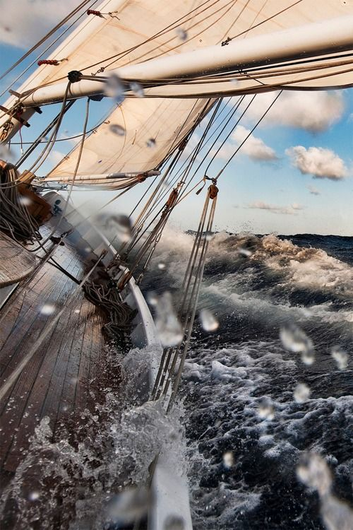 ...close hauled to the wind we gloried in the sea and no man was our master