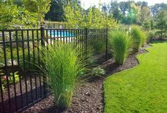 Ornamental Aluminum three rail fence around pool