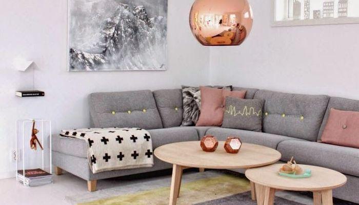 Soggiorno grigio e rosa: 15 idee per abbinare con gusto ...