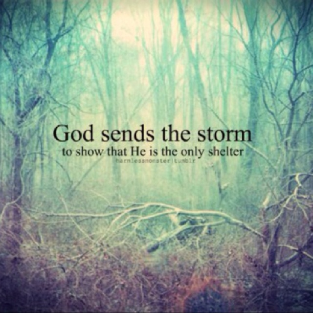 Image result for i will praise you in this storm