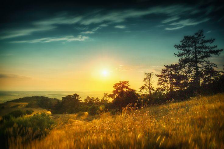Summer Heat | by MartinFrano