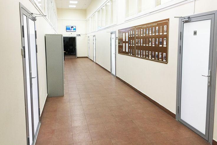 Алюминиевые офисные двери с двойным матовым стеклом