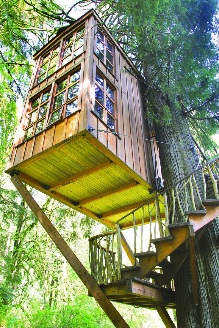 Kids tree houses inviting home design for Best treehouse designs