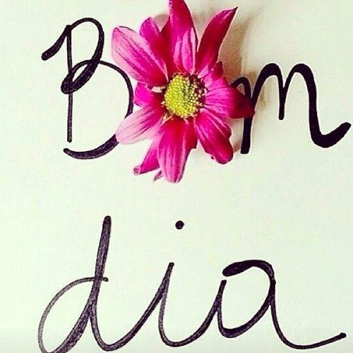 desejo um ótimo dia a todos!