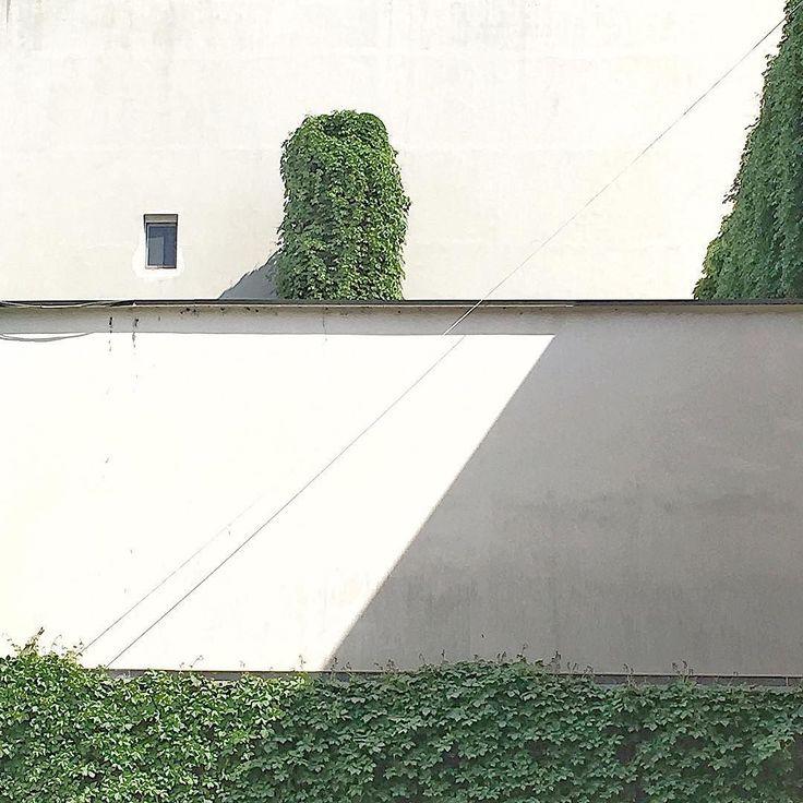 Green and white layers #shadow #minimalmood #architecturephotography #architectureminimal #fuorisalone2017 #milanodesignweek #tortonadesignweek #igersmilano #milanogram2017