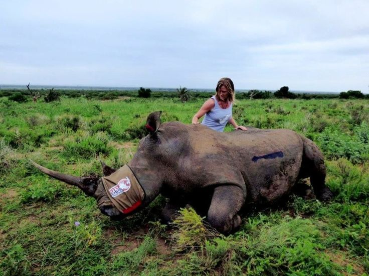 Activist Journalism can save the wild. / Jamie Joseph