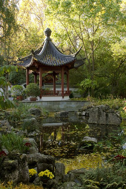 Autumn sunrise in the Chinese Garden - Missouri Botanical Garden, St. Louis MO