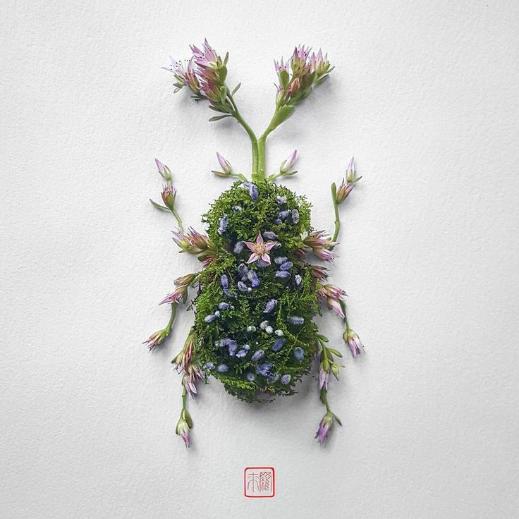Natura Insects: The Delicate Floral Compositions Of Raku Inoue
