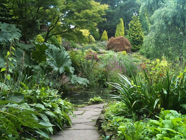 A green oasis: the rock garden at Fletcher Moss