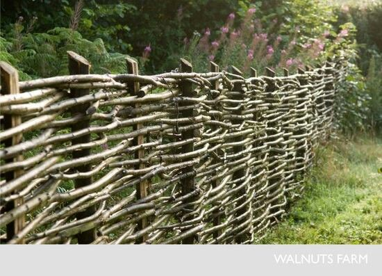 I learned to build a waddle fence like this by my brother using waterspout li...