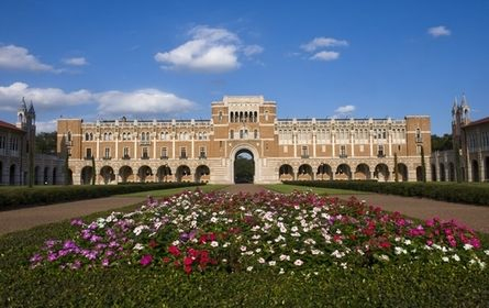 Take a stroll around the campus of the beautiful Rice University or hoot for the Owls at one of their sporting events!