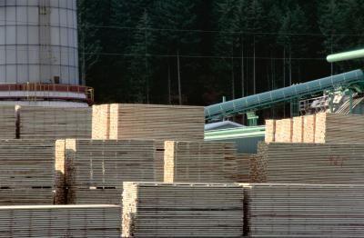 How to Sell Black Walnut Lumber thumbnail