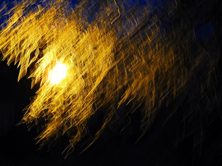 Abstract ~ Ice Storm Branches Swaying Under Urban Light ~ Photo / Image by JM