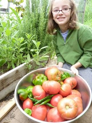 What you can reasonably grow year round with greenhouses.