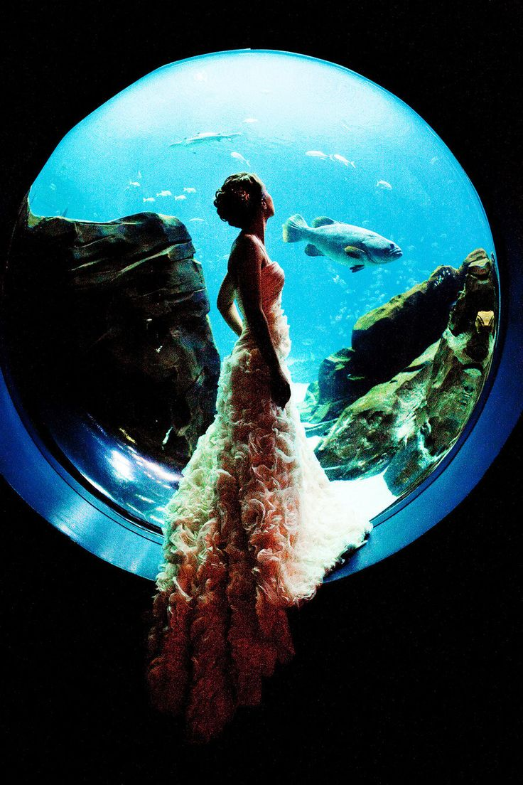 Aquarium wedding -- always what we planned… $$$$