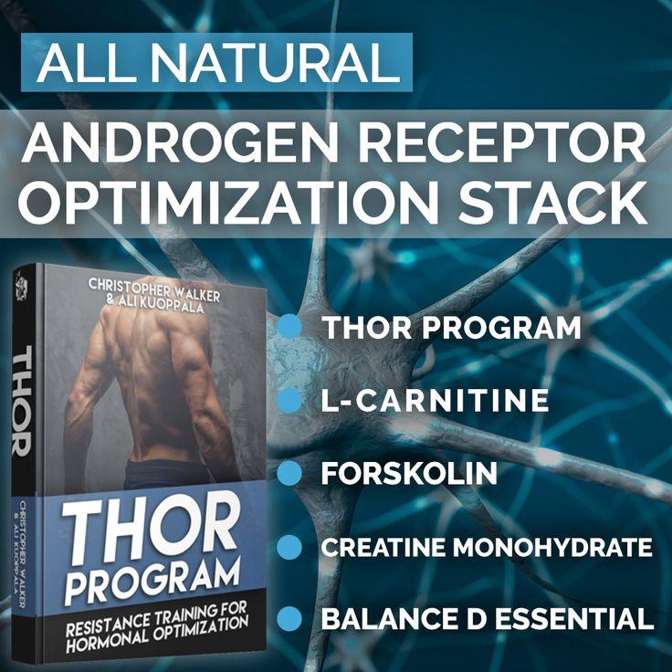 Androgen Receptor Density Optimization Stack