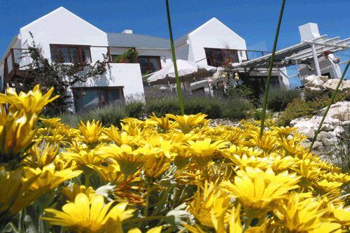 An der Westküste von Südafrika liegt das farrOut Gästehaus in Paternoster, nördlich von Kapstadt.