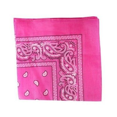 Hot Pink Paisley Bandanna 1917 (Mount St. Helens is apparently getting ready to go again.)