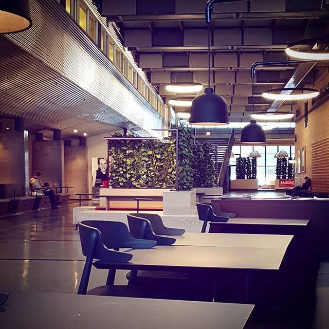Er på universitetet for å lære mer om litteratur  #uia #litteratur #skolebibliotekkunnskap #betraktninger
