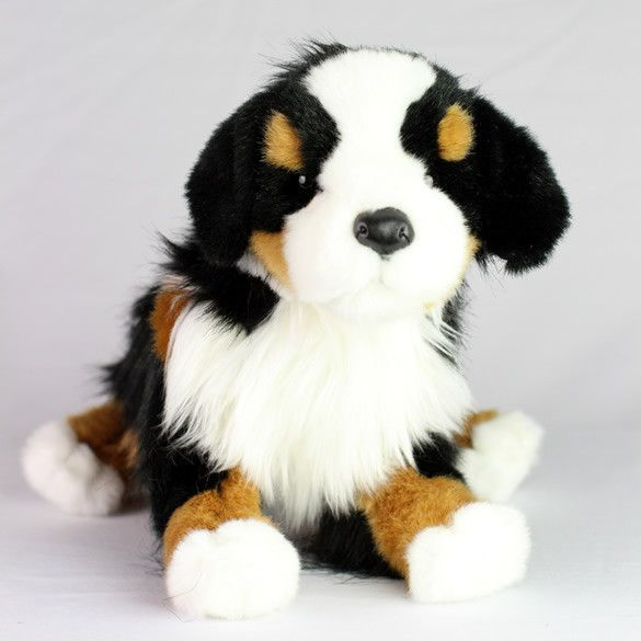 Best Breed Of Dog For Alzheimer S Patients