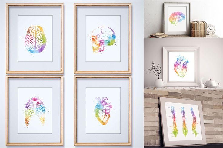 Watercolor Anatomy Prints | Medical Office Decor | Jane