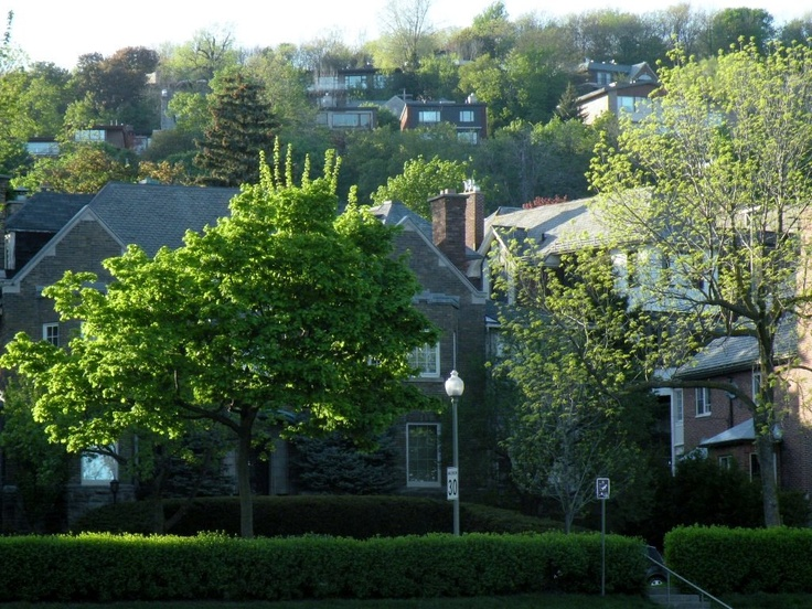View from The Boulevard, Westmount, Montreal, 2012.