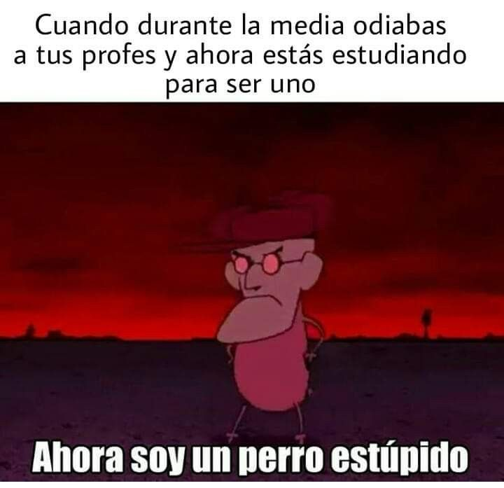 Pin De Alejandra Velez V En Momos V Memes Divertidos Memes En Espanol Memes