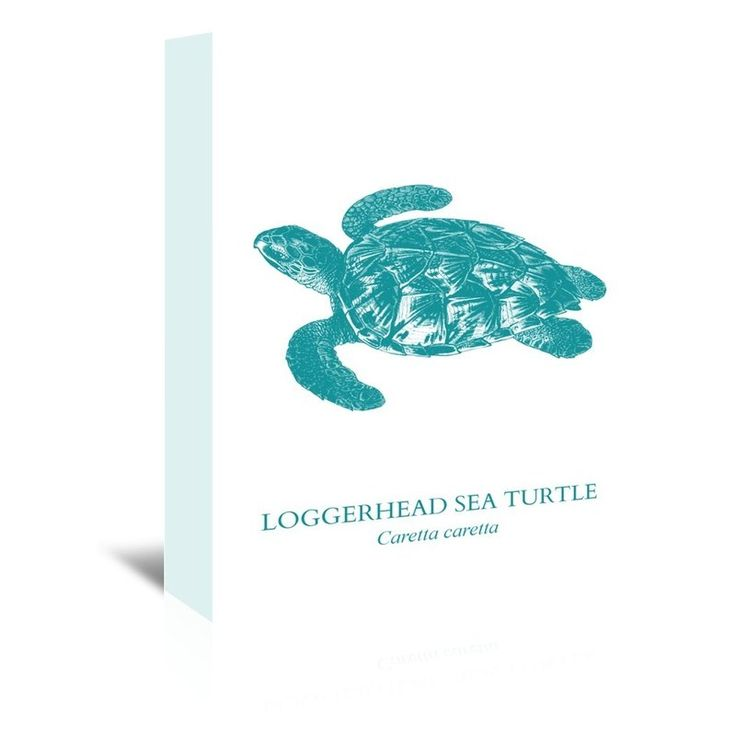 Sea Turtle Graphic Art on Wrapped Canvas