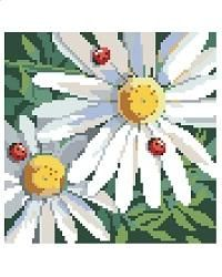Daisies and Ladybugs ~ Cross Stitch Pattern