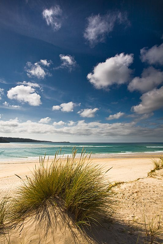 Gwithian Towans - Hayle, Cornwall, England. Photographed by Scott Harrower http://static.panoramio.com/photos/original/55306289.jpg