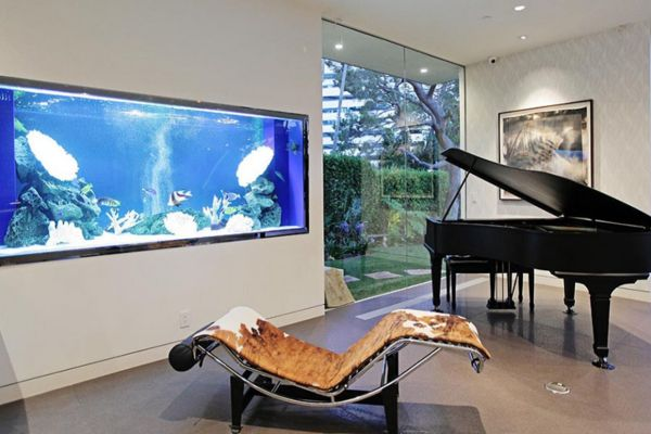 best 25 aquarium fische ideas on pinterest aquarium. Black Bedroom Furniture Sets. Home Design Ideas