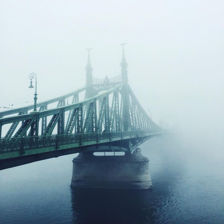 • fading year • #bridge #budapest #liberty #water #architecture #vscogood #indtadaily #visualsoflife #thecoolmagazine #mobilemag #liveauthentic #visualsgang #mik #vscohungary #view #riverside #fog #foggy #vscocam #urban #welovebudapest