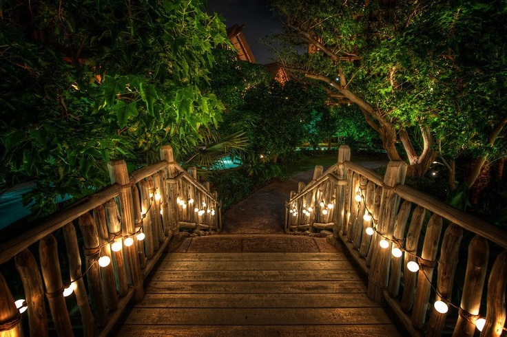 A #night shot from the #Disney resort in #Oahu. from #treyratcliff at http://www.StuckInCustoms.com - all images Creative Commons NoncommercialLights, Paths, Disney Resorts, Romantic Places, Gardens, Romantic Pictures, Bridges, Hawaiian Islands, Backgrounds Pictures