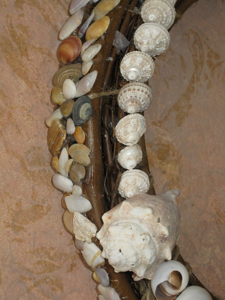 The side is covered with Bivalves: halve shells connected by a hinge and include the familiar Oysters, Scallops, and Clams