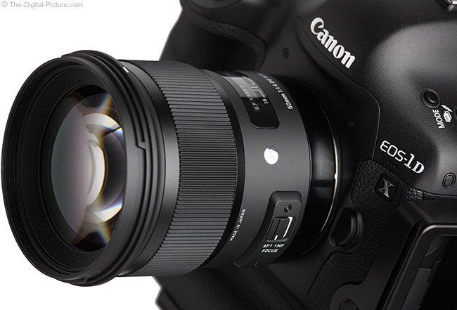 Sigma 50mm f/1.4 DG HSM Art Lens on Canon EOS 1D X – Close Up.   For more commentary on this lens and many others visit: http://www.The-Digital-Picture.com/Canon-Lenses/Canon-General-Purpose-Lens.aspx