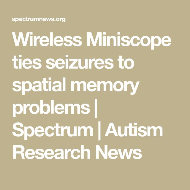Wireless Miniscope ties seizures to spatial memory problems | Spectrum | Autism Research News