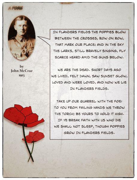 For Rememberance/Veterans/Poppy Day