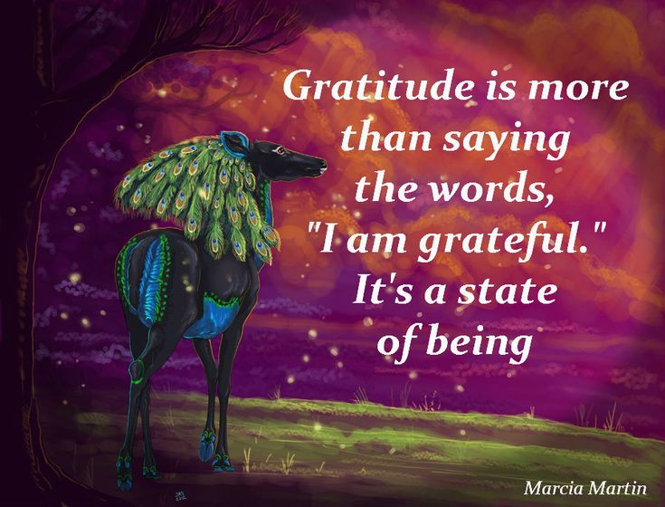 Image result for i am filled with gratitude affirmation gif