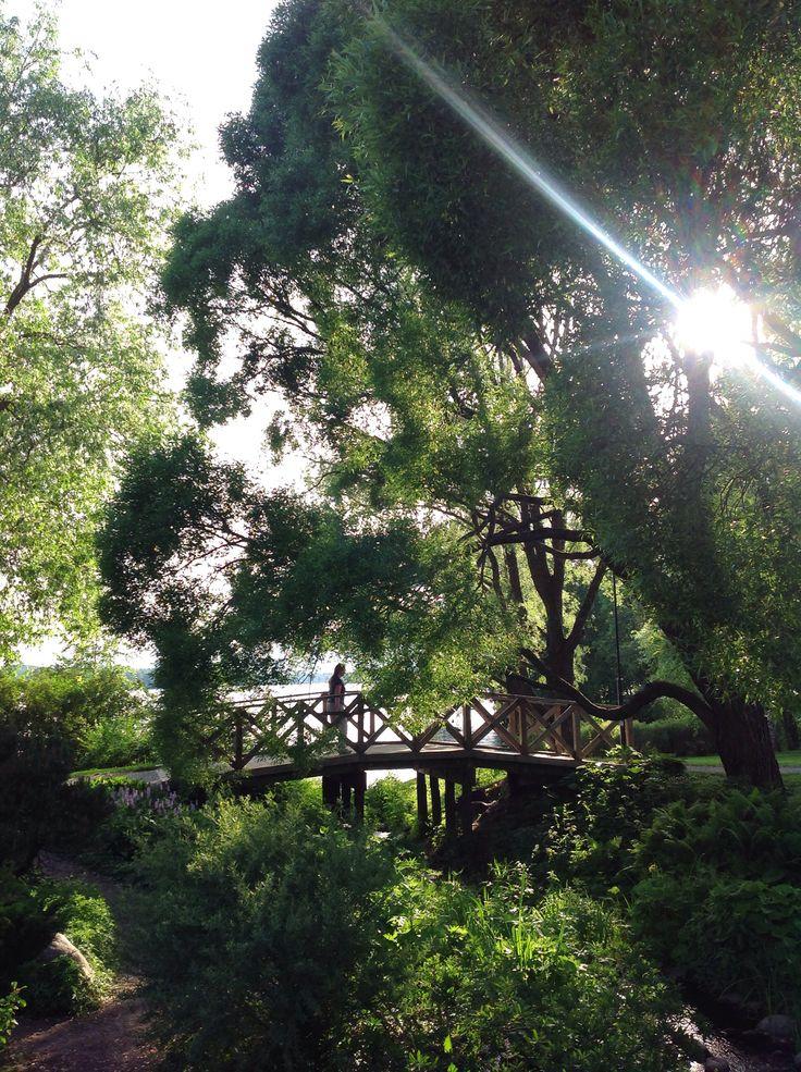 Hatanpää Arboretum in Tampere, Finland. #tampereallbright #tampere #summer www.tampereallbright.fi